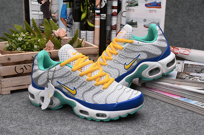 man nike air max plus tn trainer couple couleur chaussures