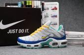 man nike air max plus tn trainer couple couleur shoes